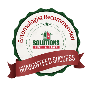 Solutions Pest and Lawn Coupon
